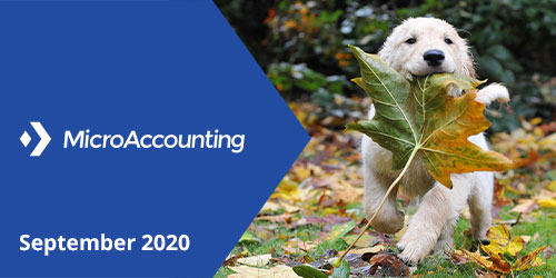 MicroAccounting September 2020 Newsletter